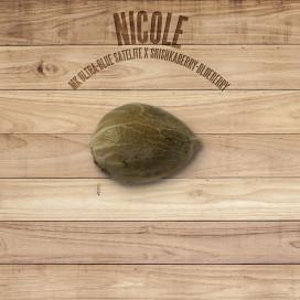 Seed The Plant - Semilla generación S5 - Nicole