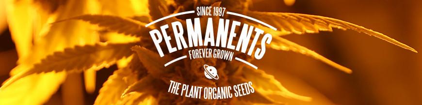 Permanents
