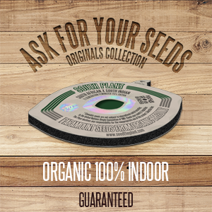 The Plant Organic Seeds Originals