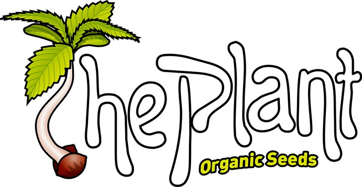 The Plant Organic Seeds. Premium Genetics from Organic Breeding