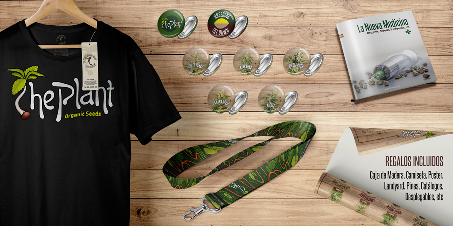 the-plant-banner-starter-kit-contenido-regalos