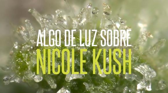 Algo de luz sobre Nicole Kush